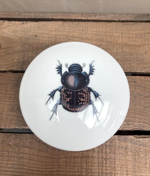 Boite en faïence scarabée